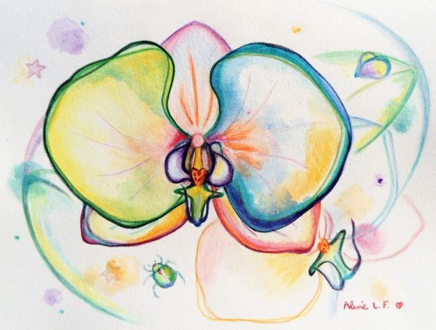 Aline Lamiable Ferraton Orchidées 2 Aquarelle crayons aquarellables (18x24cm) 2018